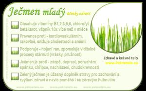 info-jecmen