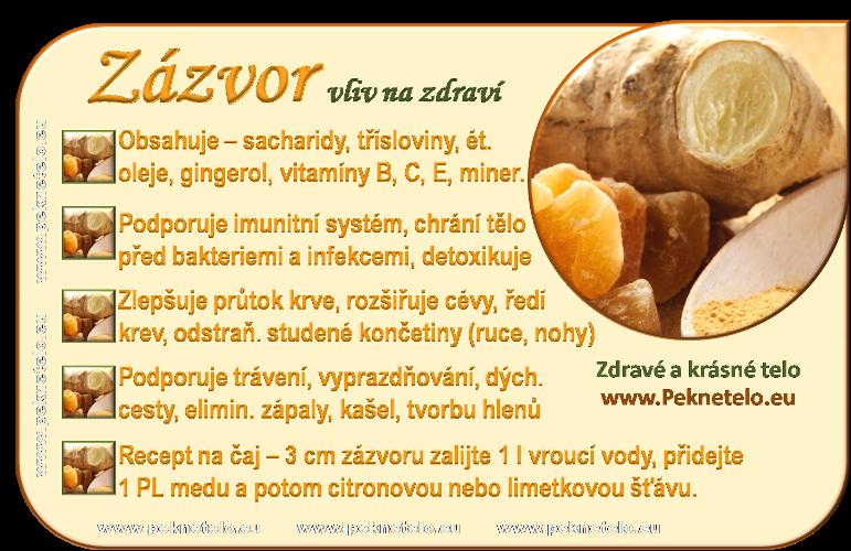 info zazvor cz