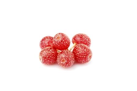 BUFFALOBERIE-cervene bobule