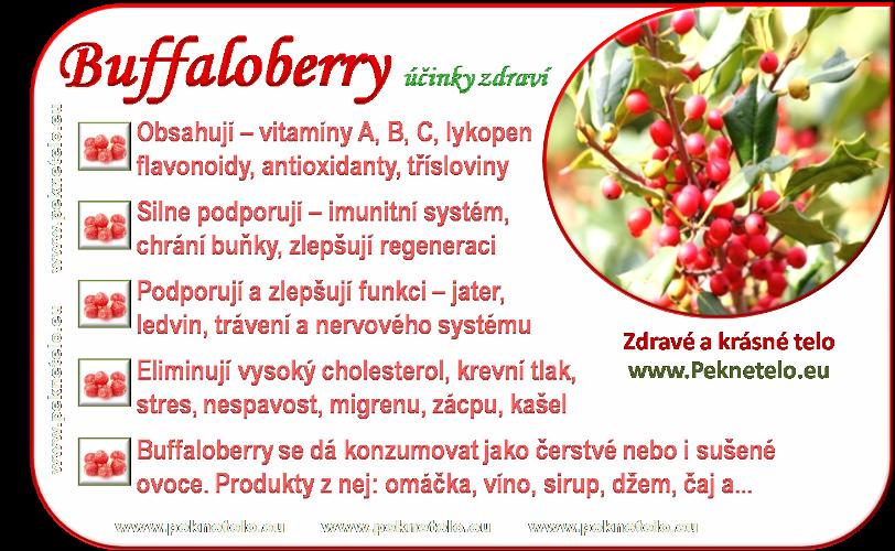 Info obrazek buffaloberry