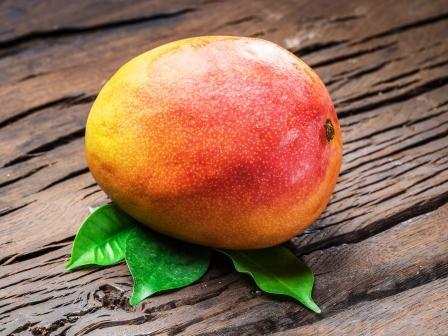 Zrele mango ovocie s mango listami