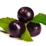 ovoce acai berry