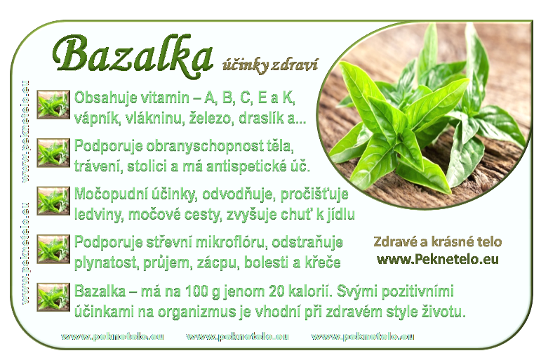 info bazalka cz