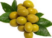 zelenina ovoce olivy