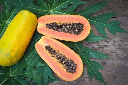 papaya ovocie s listami