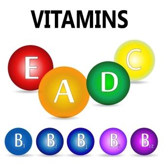 rebarbora vitaminy