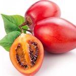 tamarillo ovoce