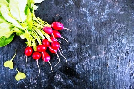 cerstva zahradni redkvicka