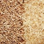 basmati ryza