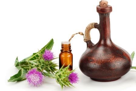olej z ostropestřece mariánského a rostlina na bílém pozadí