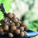 longan cele plody exotickeho ovocia