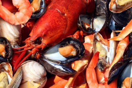 omega 3 kyseliny plody mora ryby
