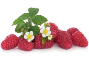 maliny ovocie
