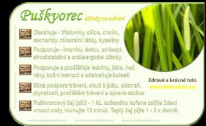 info puskvorec