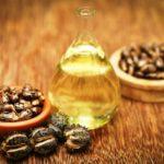 ricínový olej ve flašce a semená ricínu