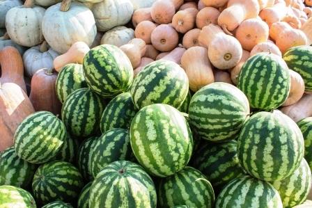 melouny a dyne