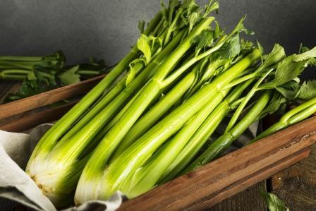 stonkový celer v debničke