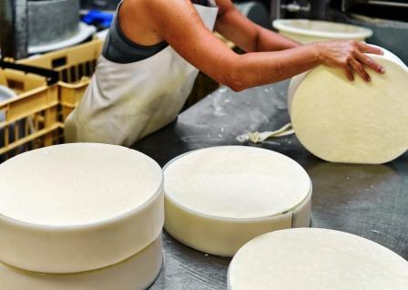 výroba syrů v mliečném závodě