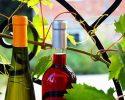 Není víno jako víno, seznamte se s těmito druhy: aronie víno, železité a žaludeční víno…