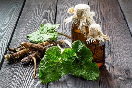 Koreny a listy lopúcha a fľašky na dřeveném pozadí