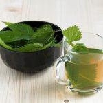 kopřivový čaj v pohári a kopřiva v misce