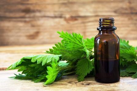 olej v malé flašce a čerstvé listy kopřivy