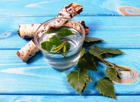 Březová přírodní šťáva detoxikuje v pohári na březovej kůre a březovej větve.