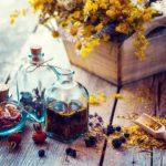 Fľaška tinktury malavit a suché zdravé byliny dřevěná lopatka léčivých bylinek