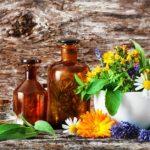 Léčivé fľašky a léčivé byliny na dřevěném stole. Bylinková medicína