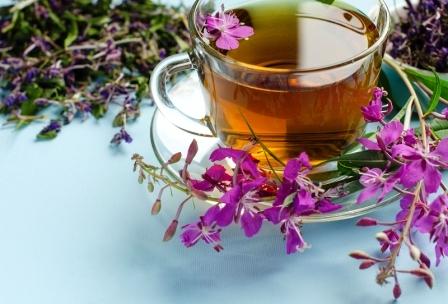 Léčivý čaj vrbovky kypriny úzkolisté
