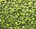 Vše o zelené kávě je tady! Příprava, účinky na zdraví, hubnutí a jak často ji pít?…