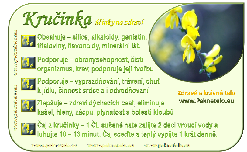 Info obrázek kručinky