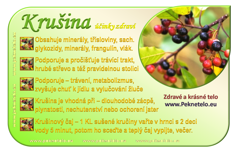 Info obrazek krusina