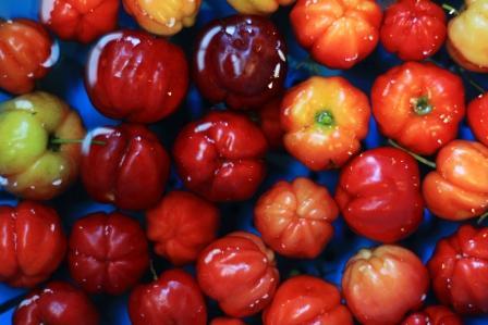 acerola cervene Barbados Cherry plavajuce ve vode