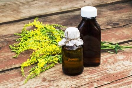 komonice lekarska tinktura