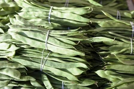 zvazky susenych zelenych fazuli