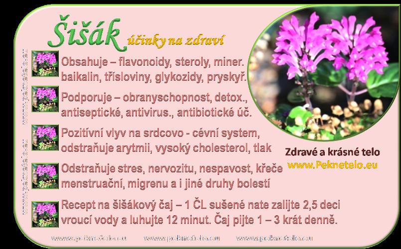info obrazek sisak bajkalsky