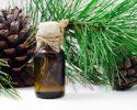 Cedrový olej má skvělou chuť a pomáhá zdraví zevnitř ale i zvenku!