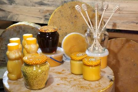 vceli vosk, plast, med, pyl, propolis - vyrobky vcelarstvi