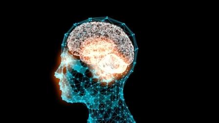 ginko pro lepsi mozek