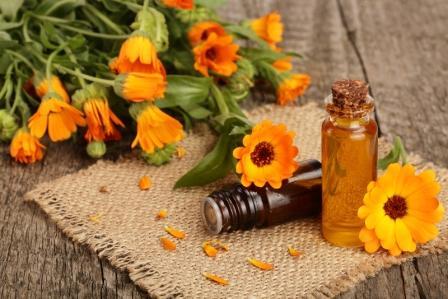 olej s cerstvymi kvety mesicka