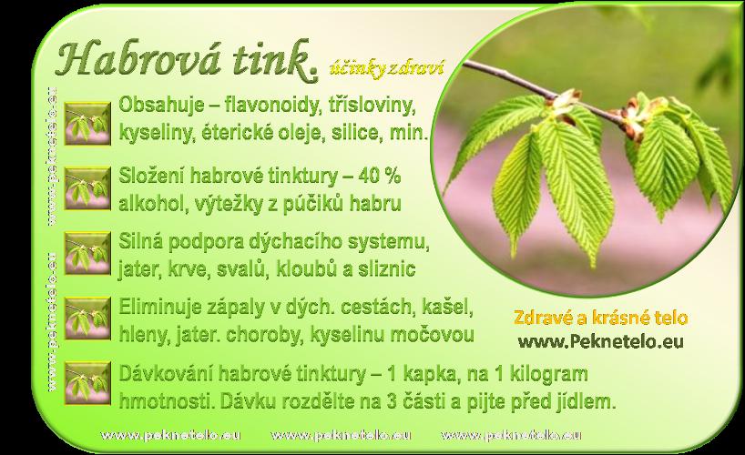 info obrazek habrova tinktura