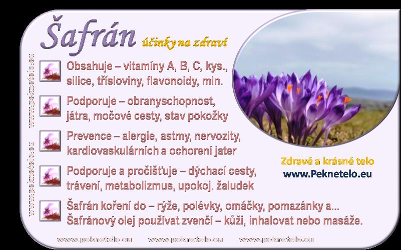 info obrazek safran bylina