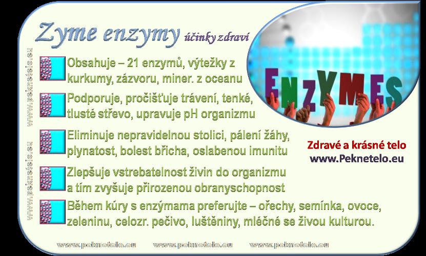 info enzymy cz
