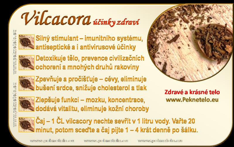 info vilcacora cz