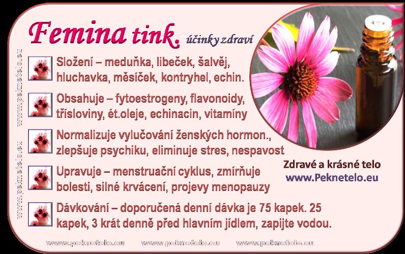 info femina cz