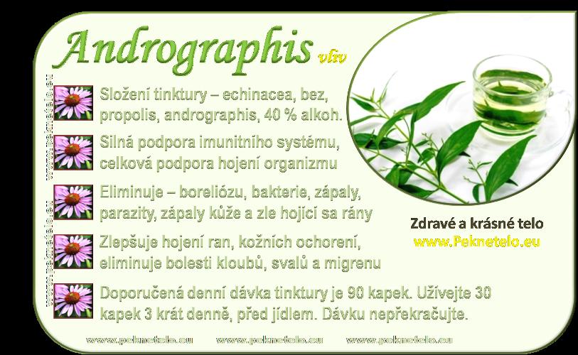 info andrographis tinktura cz