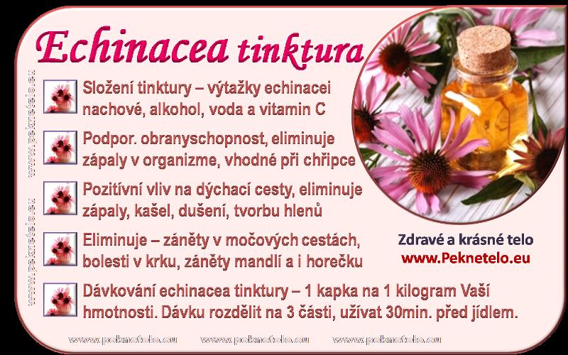 info echinacea cz