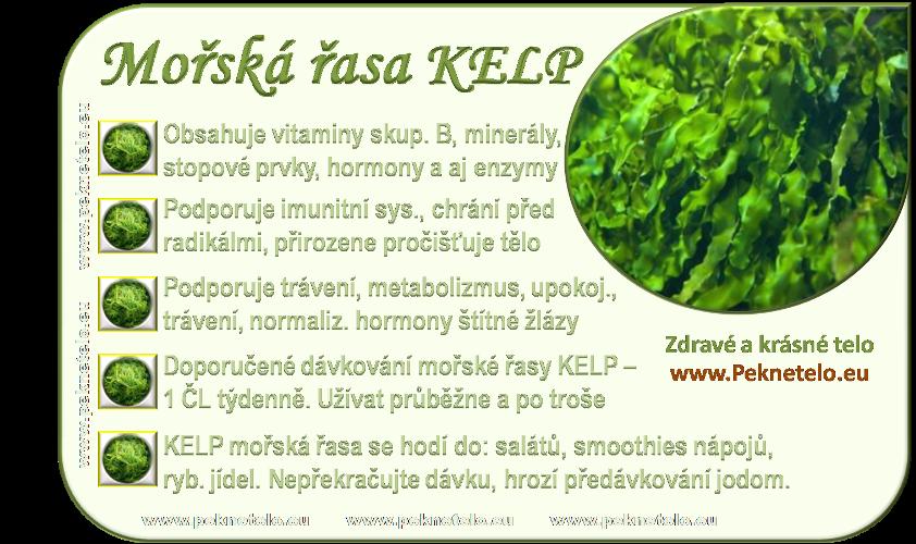 info morska riasa kelp cz